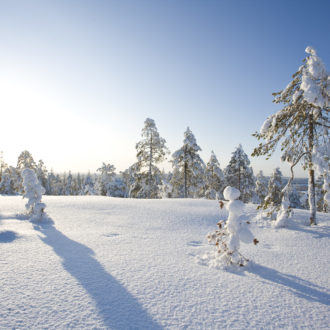 Photo: Antti Kurola / Rovaniemi Tourism & Marketing Ltd.