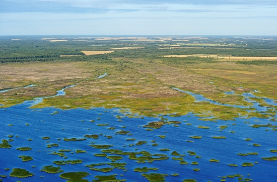 Aerial view: Beautiful Liminka Bay forms part of a worldwide network of wetland reserves vital to bird species suffering from habitat loss.