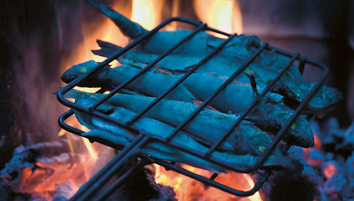 火焰燃绕产生的热气,树叶摩擦的沙沙声——一顿非常特别的鱼肉大餐。
