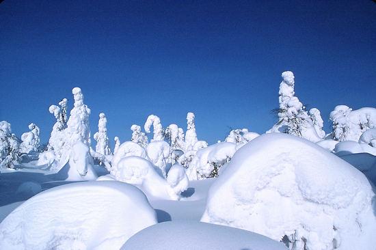 Der Klimawandel könnte zu weitenteils schneefreien Wintern in Südfinnland und stärkeren Schneefällen im Norden des Landes führen.