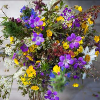 Un bouquet de fleurs sauvages colorées.