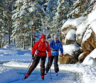 Finnish forestry industry, recreational use, conservation, Forest Act, certification, Finland