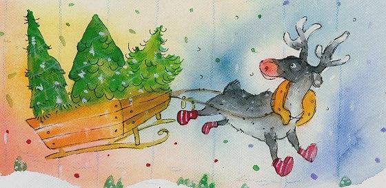 图:Heli Pukki 在这个拥有75%森林覆盖率的国家里,这三种树对于芬兰人来说是截然不同的。其中只有一棵才是正宗的圣诞树,是哪一棵呢? 图:Heli Pukki 这是一道秘方吗?一篇布道词?或是一张合唱歌谱?还是其它圣诞活动道具?