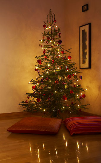 The Finnish Christmas tree tradition got its start in 1829 and became widespread in the late 1800s.