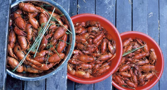 The most prized crayfish come from Finnish lakes. However, they are also imported from Turkey, Spain, China and the US.