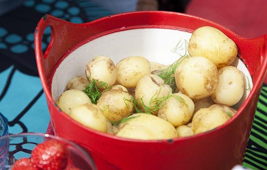 2584-potatoes_mek_550px-jpg