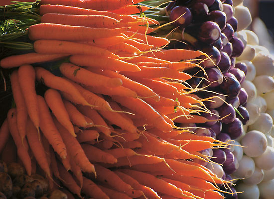 A pile of carrots and spring onions.