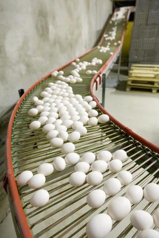 2634-eggs_in_finland-jpg