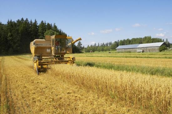 Des produits bruts de bonne qualité, une gamme de production aussi constante que variée et une longue tradition de collaboration entre les chercheurs, les pouvoirs publics et les professionnels de l'industrie agro-alimentaire.