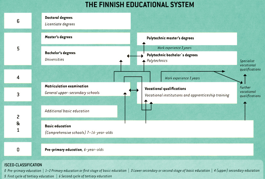 An infographic picturing the levels of Finnish education system.