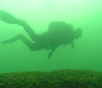 Финская программа инвентаризации подводной морской среды, ВЭЛМУ, Группа действий по Балтийскому морю, Финский залив, Архипелаговое море, Ботнический залив, Хельсинки, Санкт-Петербург, Балтийское море, природа Финляндии