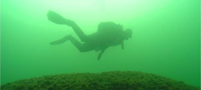 Finnisches Programm zur Bestandsaufnahme der Unterwasserwelt, VELMU, Ostseeaktionsgruppe, Finnischer Meerbusen, Schärenmeer, Bottnischer Meerbusen, Helsinki, St Petersburg