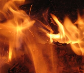 Les forêts doivent être gérées de manière à ce que le carbone libéré lors de la combustion du bois soit réabsorbé par les forêts en cours de croissance.