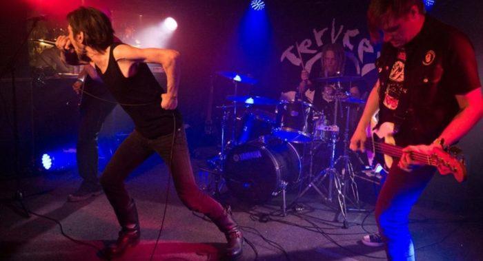 Хардкор-группа Terveet Kädet образовалась в Финской Лапландии в 1980 годах и до сих пор гастролирует.