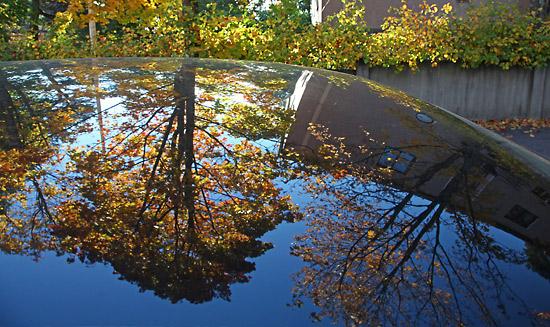 Les couleurs de l'automne et un ciel bleu profond se reflètent sur une voiture. Photo: Tim Bird