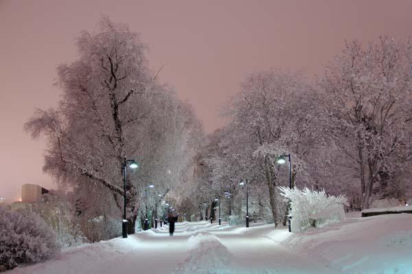 La nieve trae la calma y el silencio a la bahía de Töölö, en Helsinki. Al fondo se ve la Casa de Finlandia, del arquitecto Alvar Aalto. Foto: Niklas Sjöblom/taivasalla.net