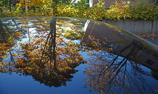 Autumn colours and a deep blue sky are reflected on a parked car. Photo: Tim Bird