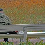 """Ворона и ее друг. «В Отаниеми (к западу от Хельсинки) на берегу стоит скамейка, и этот человек каждый день приезжает к ней на велосипеде, чтобы кормить птиц. С его появлением ворона, которая обычно сидит где-нибудь на дереве, тут же спускается и устраивается на спинке скамейки. Они разговаривают на вороньем языке: """"Кар! Каррр!""""» Фоном для их беседы служит пожелтевший осенний тростник у кромки воды."""