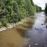 После весеннего половодья уровень воды на порогах в Питкякоски у Центрального парка спадает, и река возвращается к привычному неторопливому ритму.