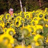 Берега реки на севере Хельсинки в конце лета словно покрывает золотой ковер – это распускаются многочисленные подсолнухи. Можете сорвать один на память.