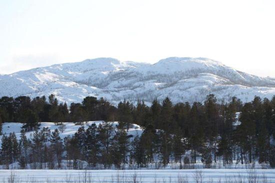 Effet de blancheur ouatée sur les sommets : « Je ne connais même pas le nom de ce mont, situé dans le secteur de Karigasniemi, tout en haut de la Finlande à la frontière norvégienne. Le paysage est illuminé par le soleil de l'après-midi. » Photo: Jukka Wuolijoki