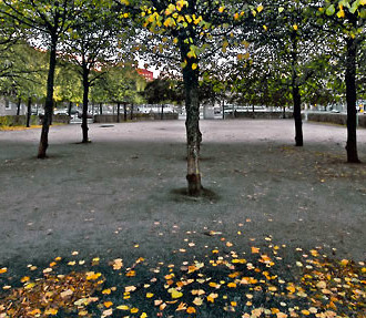 Where city and nature meet: Beside Hakaniemi Square, leaves are turning yellow in Viherniemi Park. (An uncropped version of this photo is included in the slideshow below.)