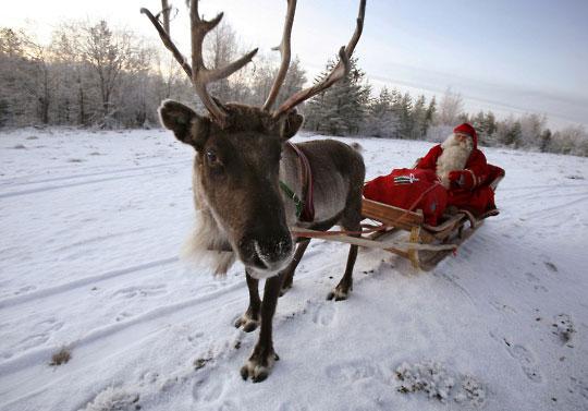 圣诞老人和他的一头驯鹿在途中停下,摆出姿势拍了这张照片。 照片: 鲍勃•斯特朗(Bob Strong) / 杂志图片公司