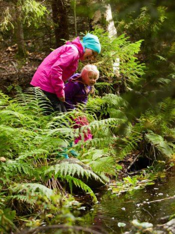 """芬兰——一个森林面积占到75%的国家,在""""好国家指数""""的""""地球与气候""""类别中排名第14。"""