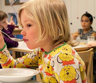 alimento orgânico, cidade de Helsinque, alimento local, creche, pré-escola, agricultura, Finlândia