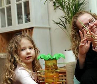 适宜于家庭生活的芬兰