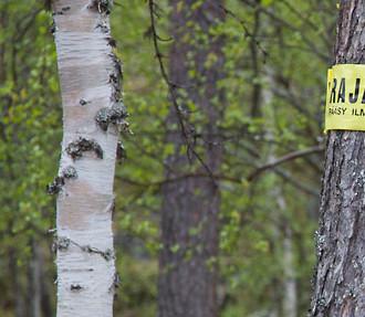 таможня финляндии, Финляндия