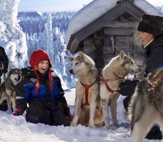 Финляндия, Рованиеми, Новый год в Финляндии, Лапландия, Новый год в Лапландии, Йоулупукки, Санта-Клаус, хаски, снег
