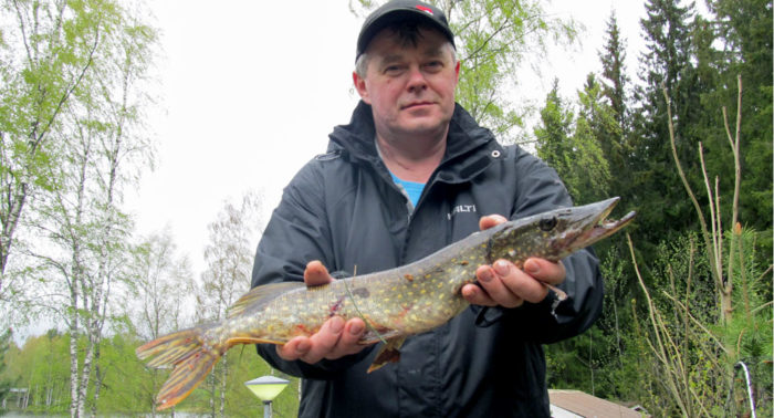 «У меня всегда с собой большой набор приманок финского производства для разных условий ловли», говорит Игорь Матвеенко из Вантаа.