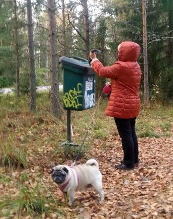 Собака есть в каждой пятой финской семье, при этом на улицах чисто. Секрет спрятан в кармане владельца: это специальный пластиковый пакет. Использованный пакет выбрасывают в особый мусорный контейнер.