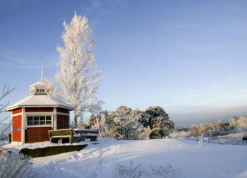 赫尔辛基动物园整个冬季都向喜爱动物的游客们开放,也欢迎任何有兴趣来高岛宜人的环境中走走的人们入园游玩。