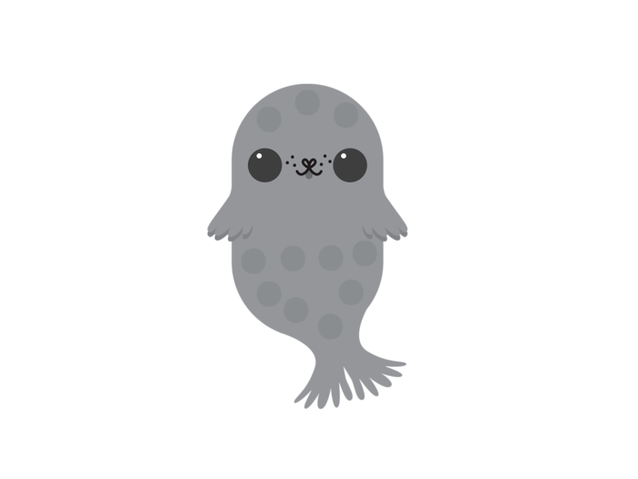A friendly-looking Saimaa ringed seal cub; a grey seal with spots of darker grey.