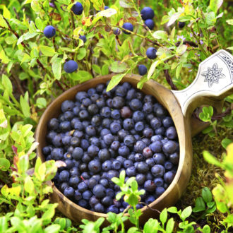Each year Finnish woodlands produce millions of kilos of wild berries. Blueberry has intense colour and flavor.