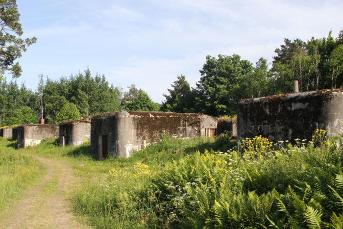 Последние два десятилетия Валлисаари был практически не тронут и зарастал диким лесом и травой. На фото старые складские помещения для боеприпасов.