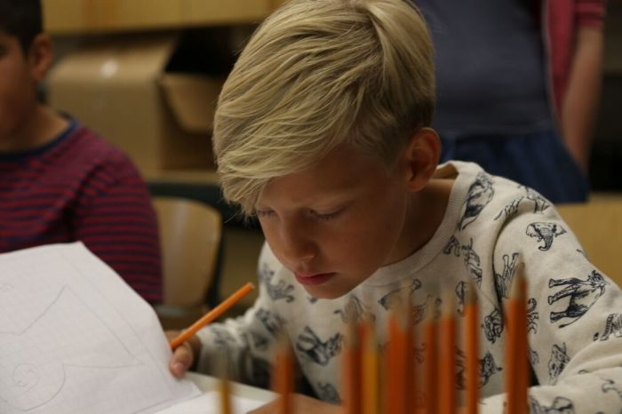 A concentrated-looking boy studying his notebook; a row of pencils set upright in front of him.
