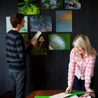 Ein Team von Link Design vergleicht Farben und Motive für ein Projekt.