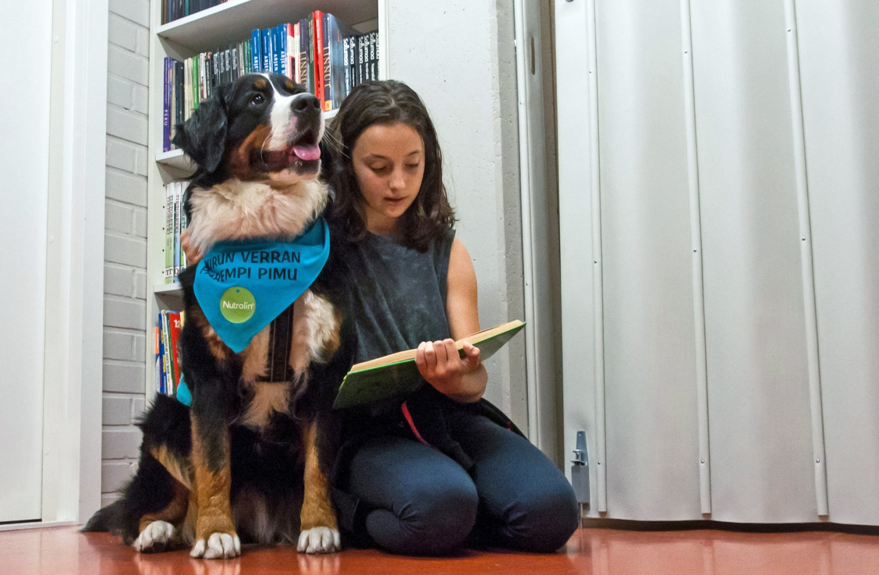 Reading Dogs UAE are helping Dubai's school kids learn to read