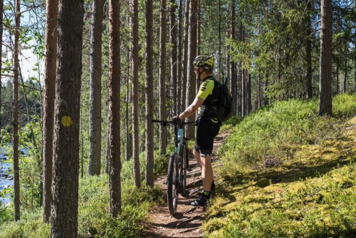 ثمة أربعة طرق للدراجات الجبلية تقطع غابات هوسا البكر، تمكن الزائرين من رؤية البحيرات العديدة التي تميز الحديقة الوطنية.