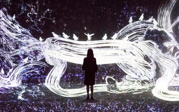 A person standing in front of a light art installation showing birds and white waves of light.