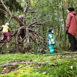 Small children climb on the roots of a fallen tree, with an adult watching nearby.