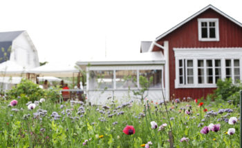 A flower garden stands in front of a red wooden cottage.