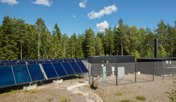 Rows of solar panels, forest in the background.