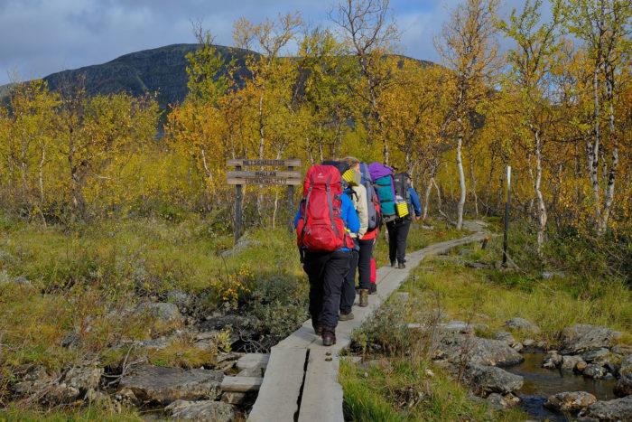 Hikers walk on duckboards with big backpacks.