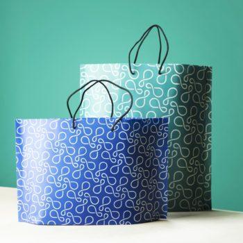 Duas sacolas de compras com alças de barbante.