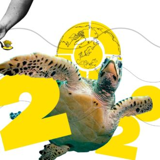 An illustration montage that includes the number 2020 and photos of a swimming sea turtle, a bee, flames, a hand holding a spoon, and a smiling elderly man.