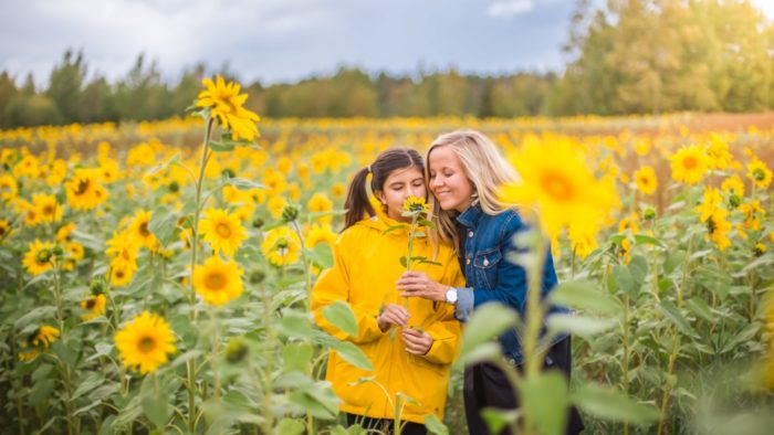 In the middle of a field full of sunflowers, two women hold a sunflower in their hands.